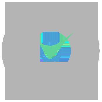 innoval-objectives